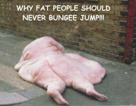 WHY FAT, GREEDY BANKERS SHOULD NEVER BUNGEE JUMP !